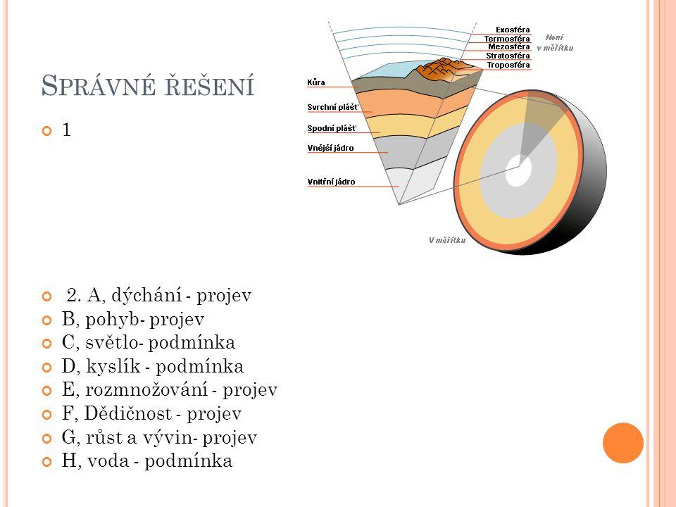 S PRÁVNÉ ŘEŠENÍ 1 2. A, dýchání - projev B, pohyb- projev C, světlo- podmínka D, kyslík - podmínka E, rozmnožování - projev F, Dědičnost - projev G, r