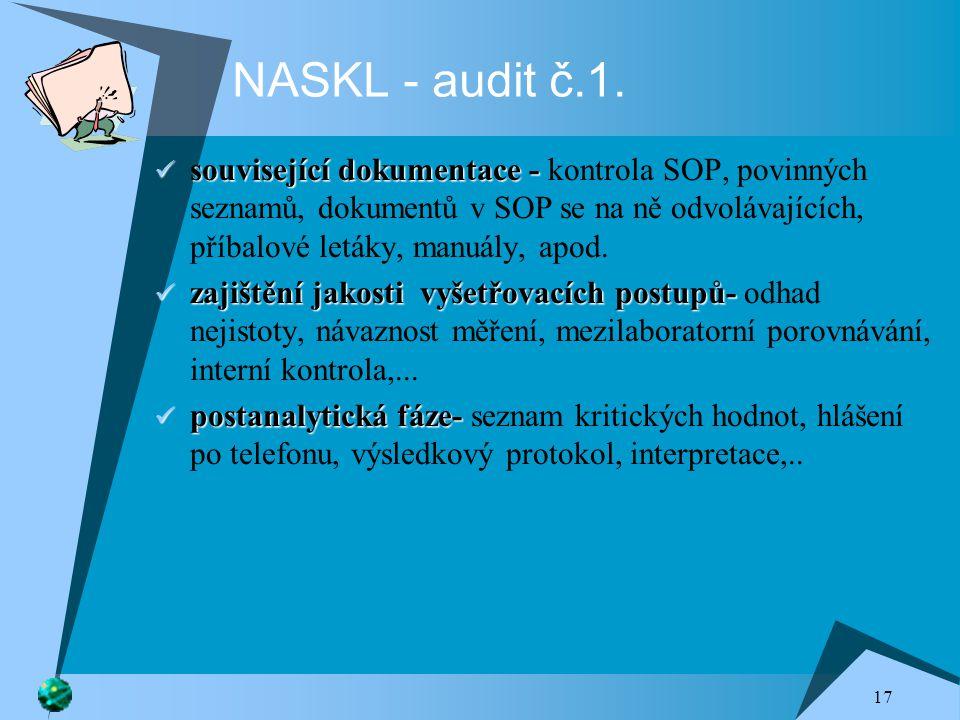 17 NASKL - audit č.1.