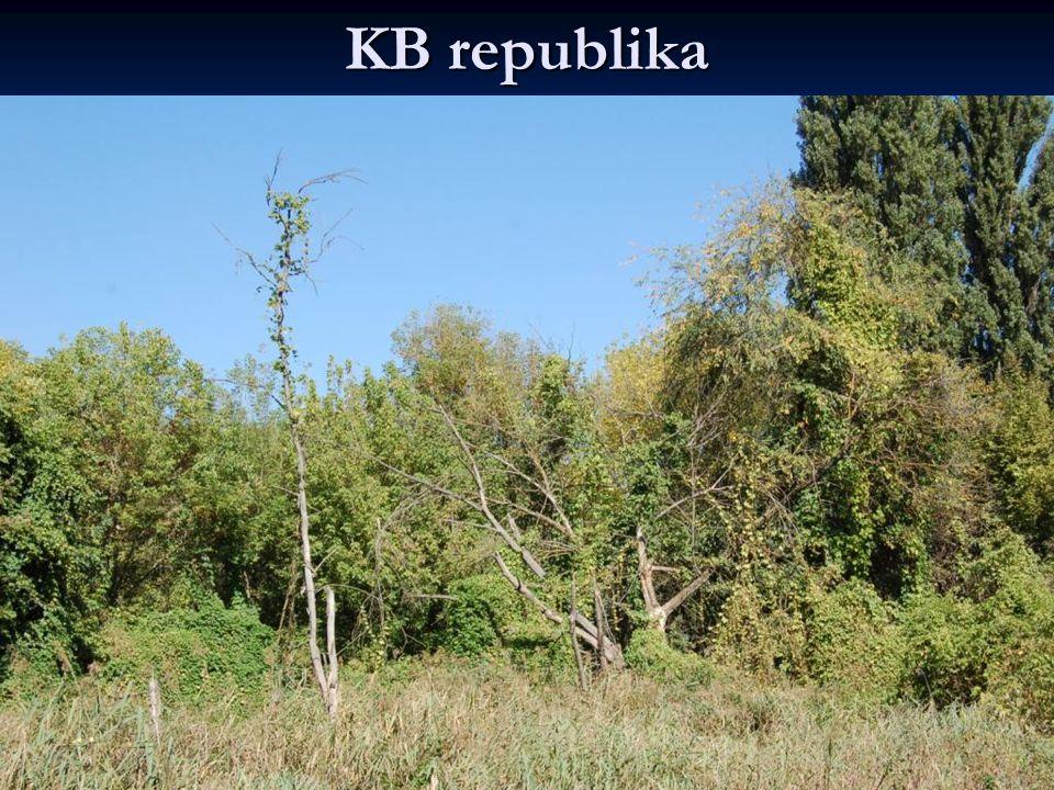 KB republika