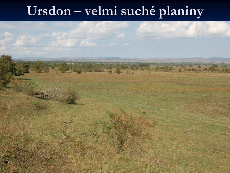 Ursdon – velmi suché planiny