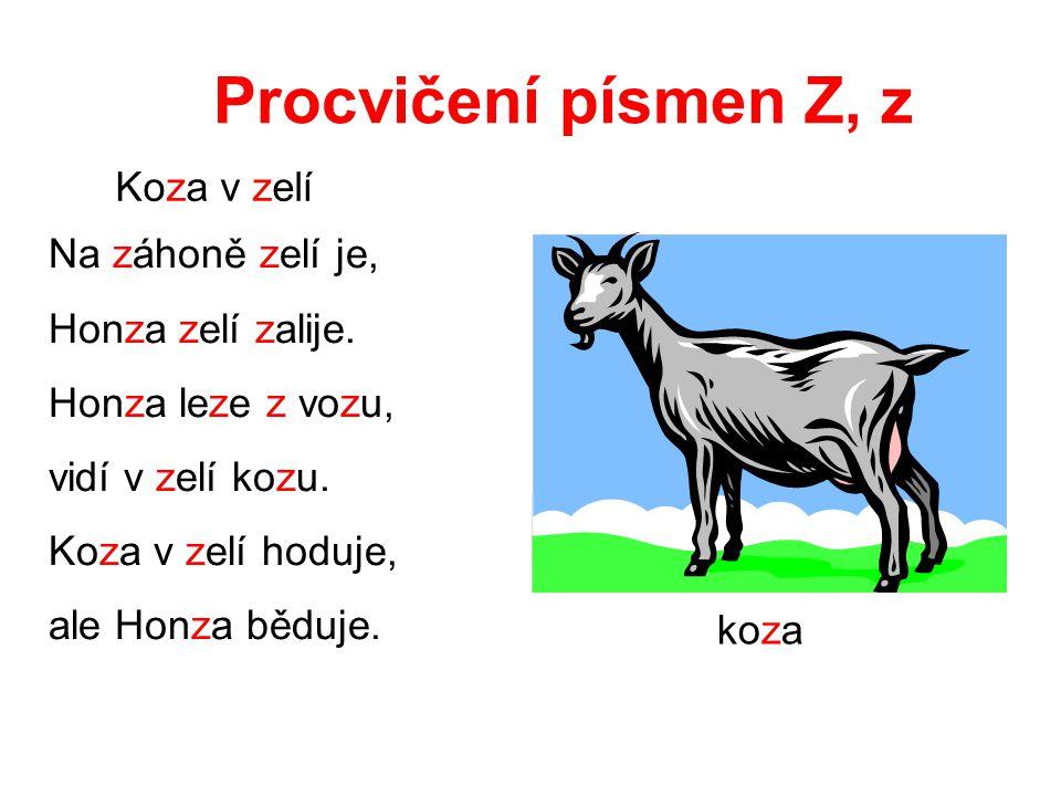 Najdi písmeno Z, z zvoneček Z zelí zahrada zahradník zelenina
