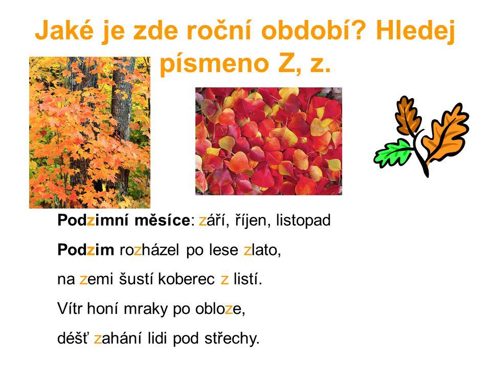 Jaké je zde roční období? Hledej písmeno Z, z. Podzimní měsíce: září, říjen, listopad Podzim rozházel po lese zlato, na zemi šustí koberec z listí. Ví