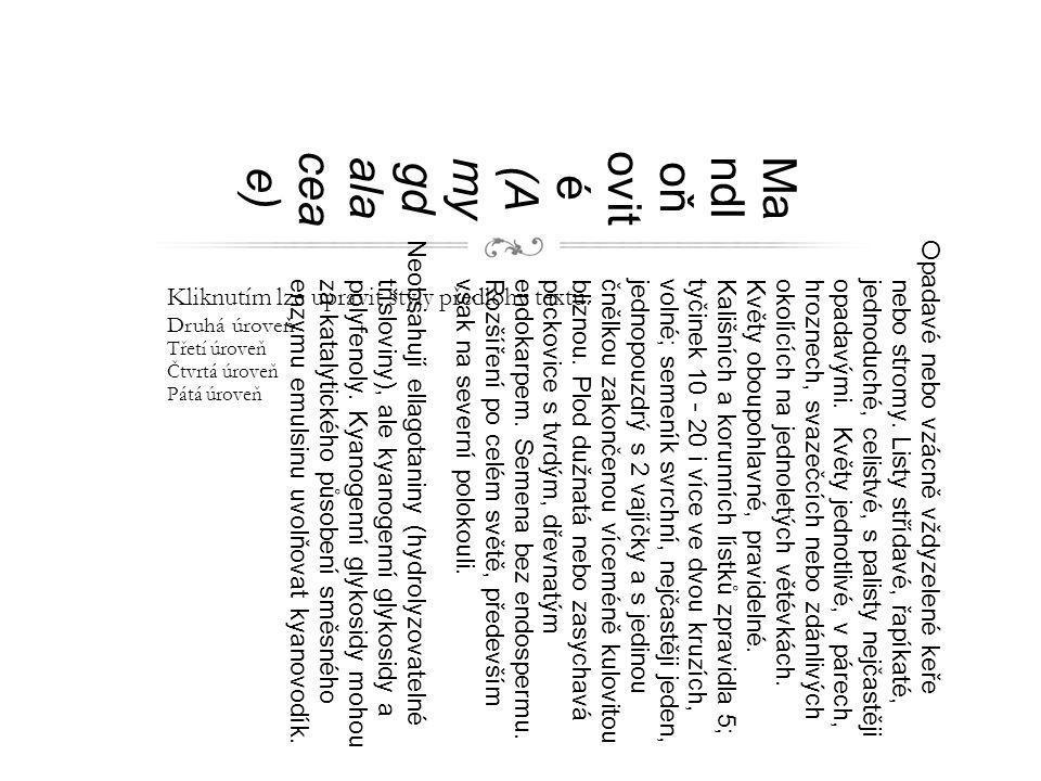 Kliknutím lze upravit styly předlohy textu. Druhá úroveň Třetí úroveň Čtvrtá úroveň Pátá úroveň Ma ndl oň ovit é (A my gd ala cea e) Opadavé nebo vzác