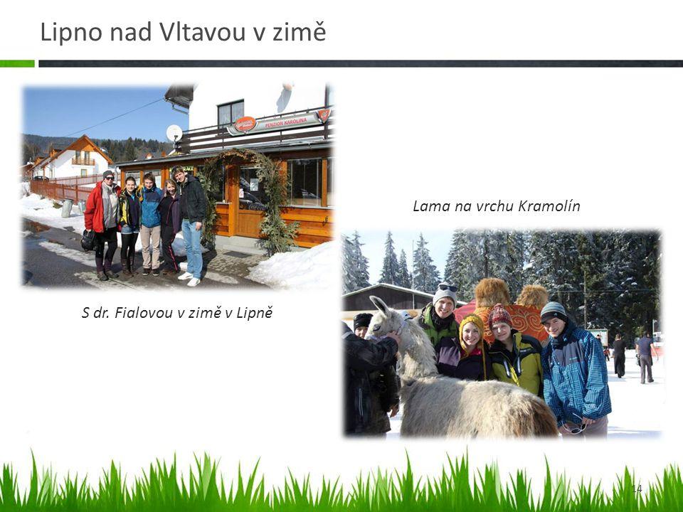 Lipno nad Vltavou v zimě 14 Lama na vrchu Kramolín S dr. Fialovou v zimě v Lipně