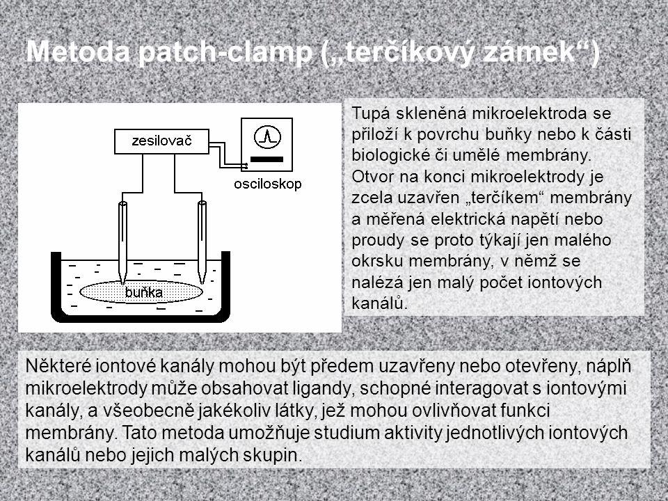 """Metoda patch-clamp (""""terčíkový zámek"""") Některé iontové kanály mohou být předem uzavřeny nebo otevřeny, náplň mikroelektrody může obsahovat ligandy, sc"""