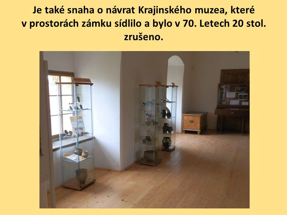 Je také snaha o návrat Krajinského muzea, které v prostorách zámku sídlilo a bylo v 70. Letech 20 stol. zrušeno.
