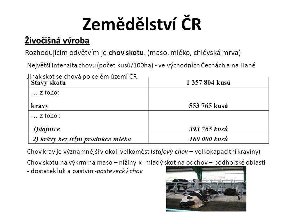 Zemědělství ČR Živočišná výroba Rozhodujícím odvětvím je chov skotu. (maso, mléko, chlévská mrva) Největší intenzita chovu (počet kusů/100ha) - ve výc