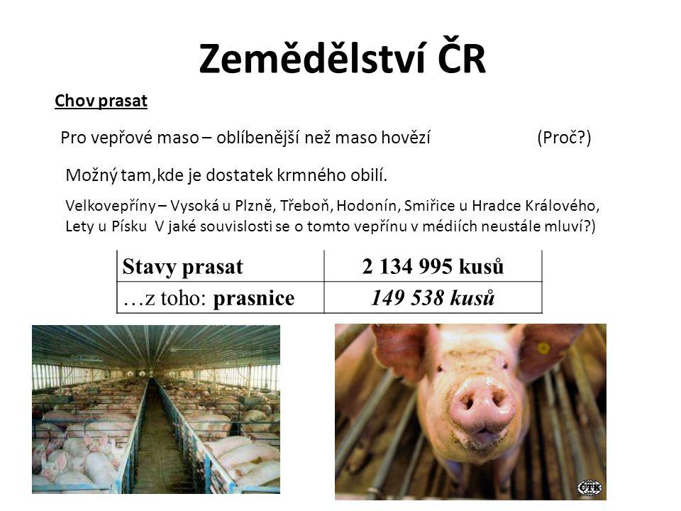 Zemědělství ČR Stavy prasat2 134 995 kusů …z toho: prasnice149 538 kusů Chov prasat Pro vepřové maso – oblíbenější než maso hovězí (Proč?) Možný tam,k