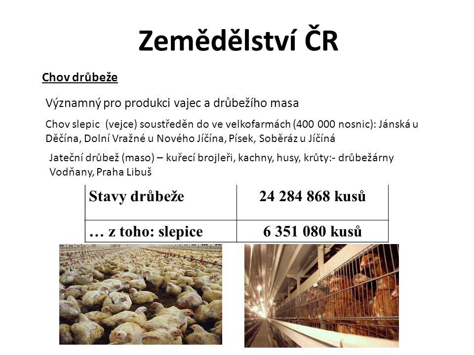 Zemědělství ČR Chov drůbeže Stavy drůbeže24 284 868 kusů … z toho: slepice6 351 080 kusů Významný pro produkci vajec a drůbežího masa Chov slepic (vej