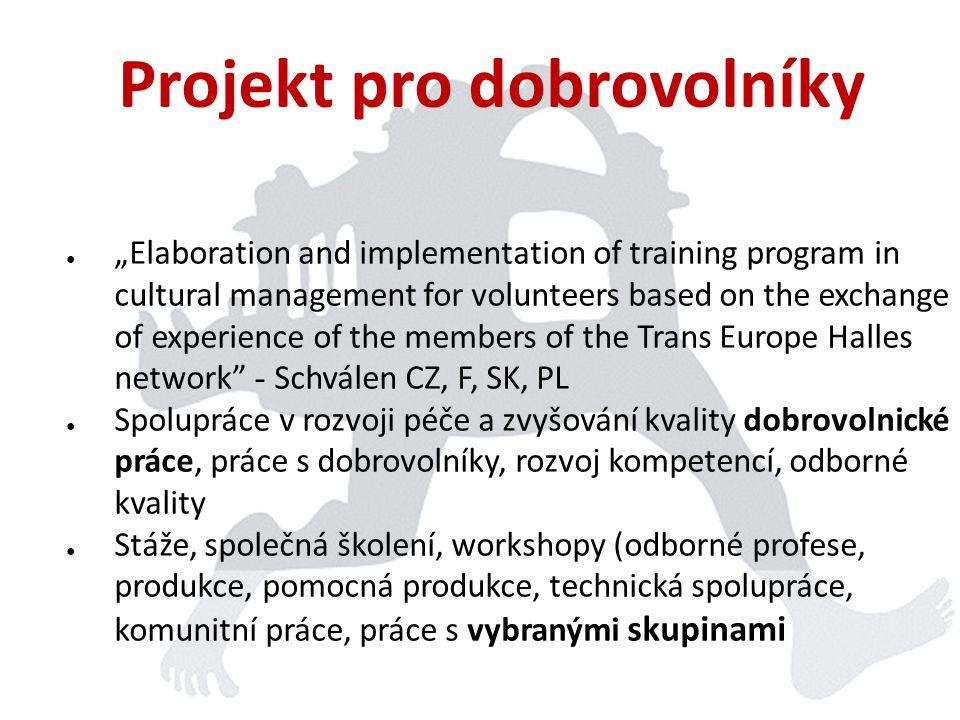 Parkinprogress • Putovní interdisciplinární projekt pro mladé umělce a profesionály z oblasti tvorby a kultury • Spolufinancován z programu EU Culture • Schválen v r.
