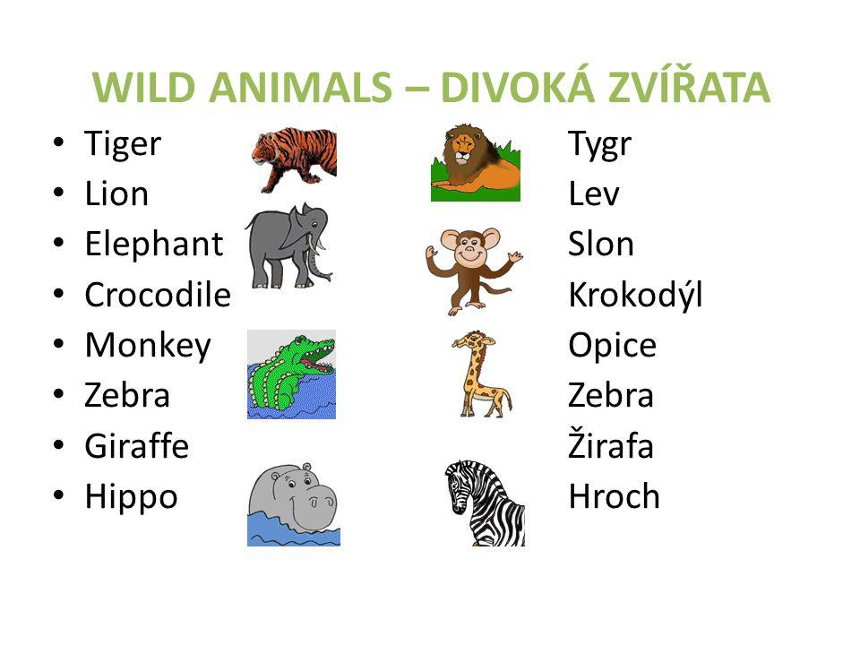WILD ANIMALS – DIVOKÁ ZVÍŘATA • TigerTygr • LionLev • ElephantSlon • CrocodileKrokodýl • MonkeyOpice • ZebraZebra • GiraffeŽirafa • HippoHroch