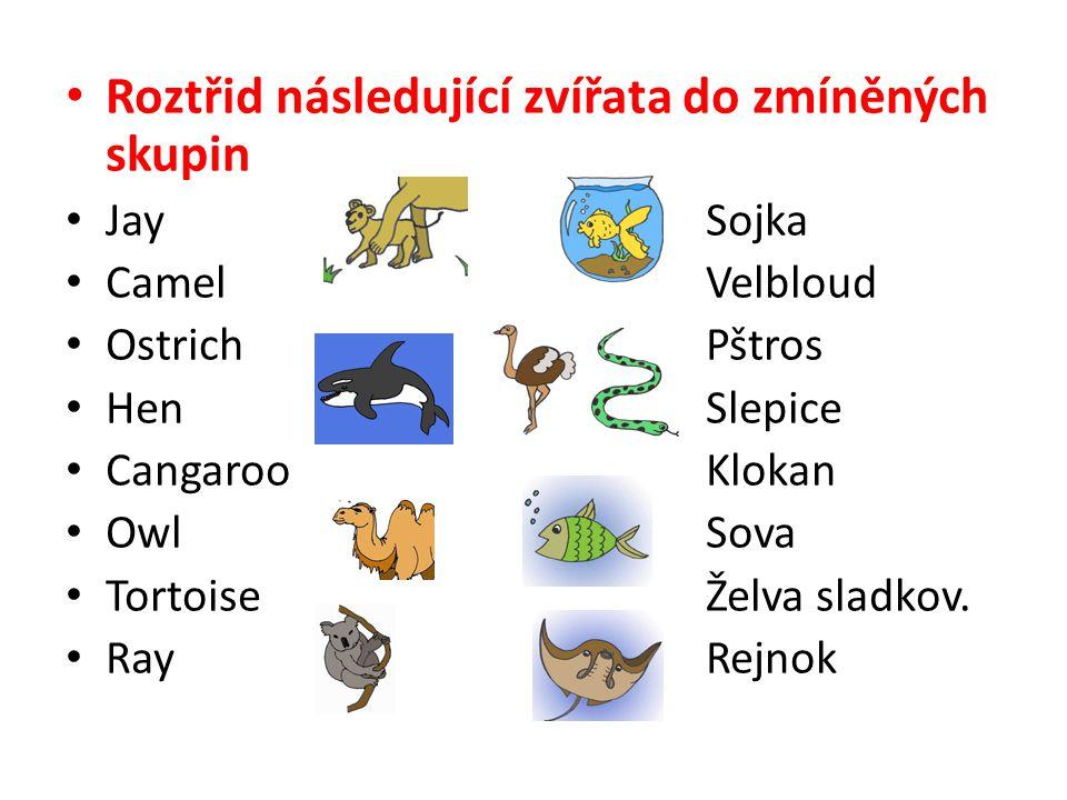 • Roztřid následující zvířata do zmíněných skupin • JaySojka • CamelVelbloud • OstrichPštros • HenSlepice • CangarooKlokan • OwlSova • TortoiseŽelva s