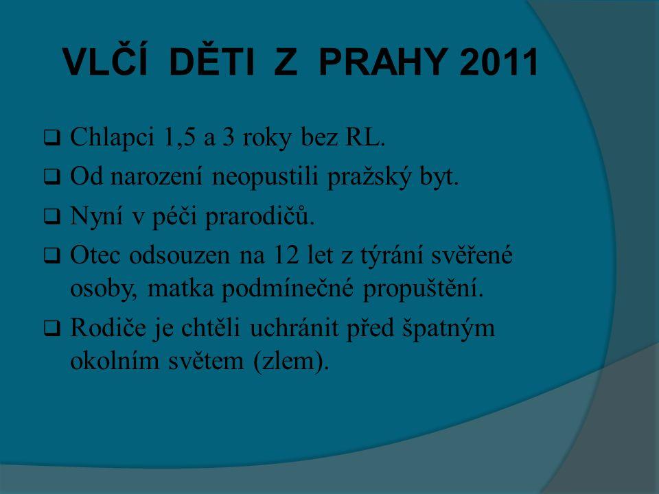 VLČÍ DĚTI Z PRAHY 2011  Chlapci 1,5 a 3 roky bez RL.