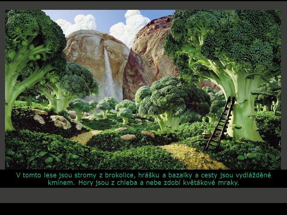 V tomto lese jsou stromy z brokolice, hrášku a bazalky a cesty jsou vydlážděné kmínem. Hory jsou z chleba a nebe zdobí květákové mraky.