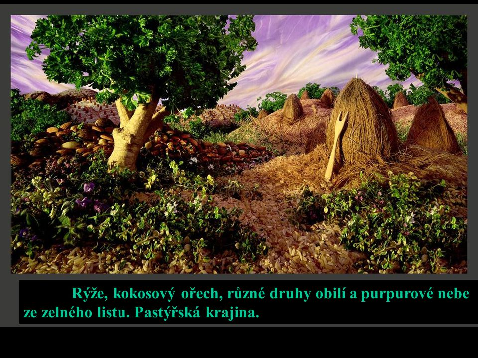 Rýže, kokosový ořech, různé druhy obilí a purpurové nebe ze zelného listu. Pastýřská krajina.