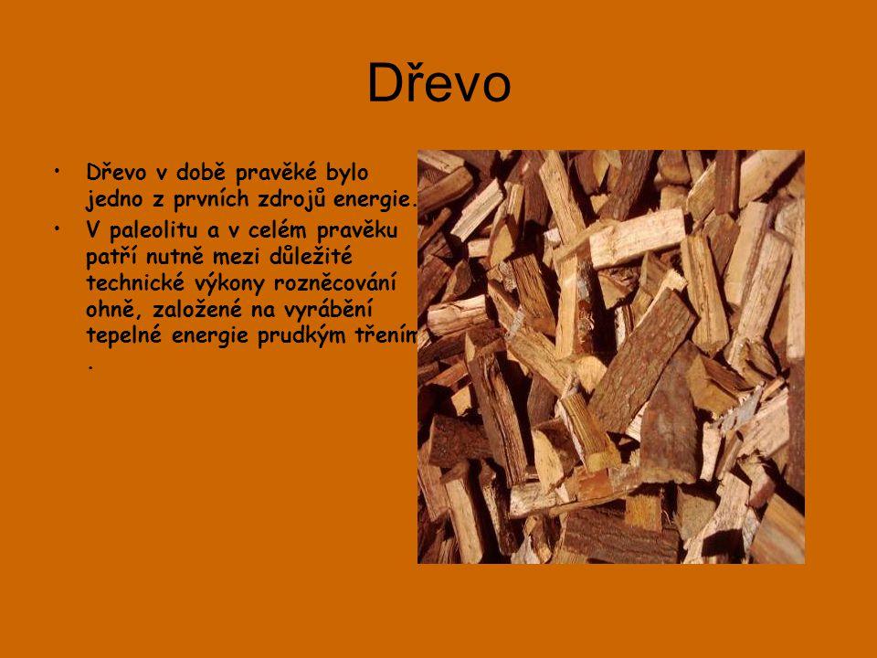 Dřevo •Dřevo v době pravěké bylo jedno z prvních zdrojů energie.