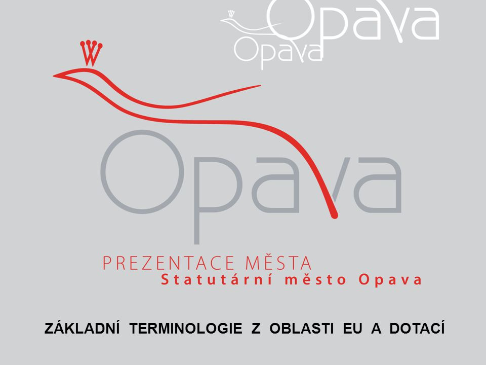 TERMINOLOGIE Z OBLASTI EU A DOTACÍ I Implementace programu Proces uvedení systému (programu) do praxe.