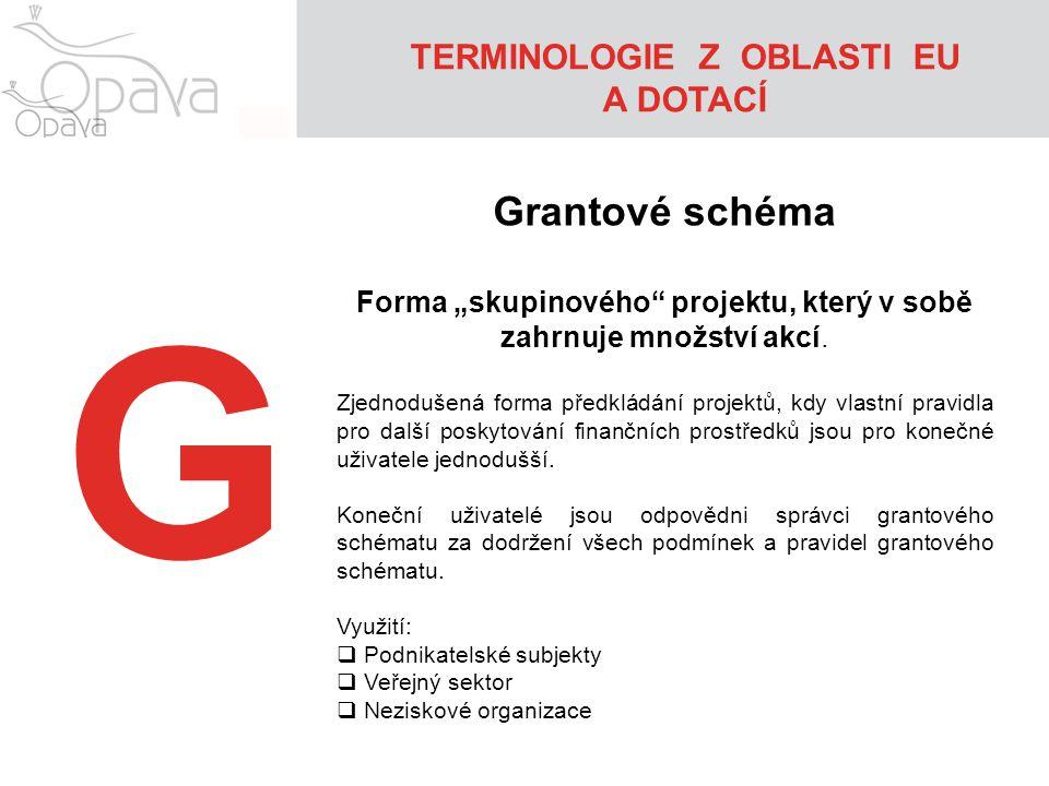 """TERMINOLOGIE Z OBLASTI EU A DOTACÍ G Grantové schéma Forma """"skupinového"""" projektu, který v sobě zahrnuje množství akcí. Zjednodušená forma předkládání"""