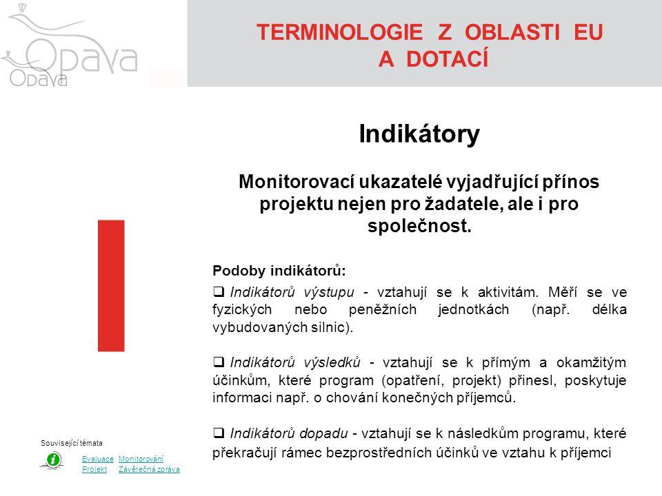 TERMINOLOGIE Z OBLASTI EU A DOTACÍ I Indikátory Monitorovací ukazatelé vyjadřující přínos projektu nejen pro žadatele, ale i pro společnost. Podoby in