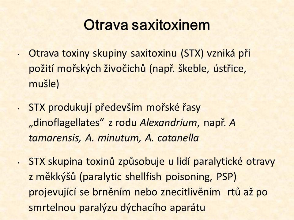 Otrava saxitoxinem • Otrava toxiny skupiny saxito x inu (STX) vzniká při požití mořských živočichů (např. škeble, ústřice, mušle) • STX produkují před