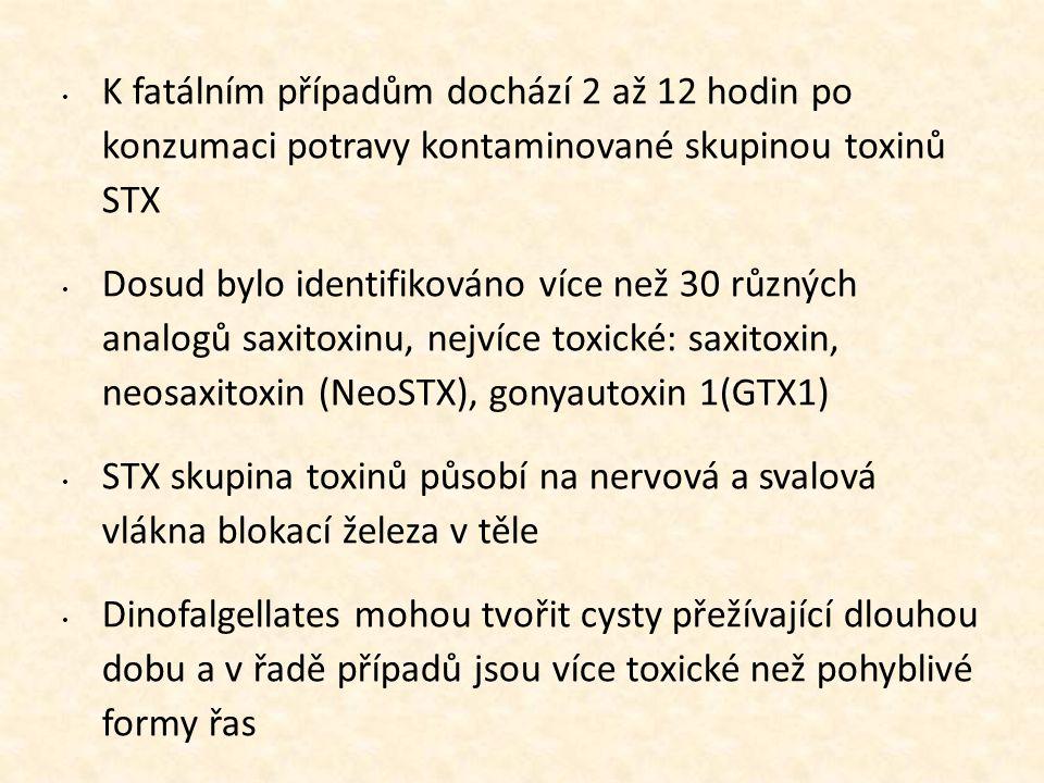 • K fatálním případům dochází 2 až 12 hodin po konzumaci potravy kontaminované skupinou toxinů STX • Dosud bylo identifikováno více než 30 různých ana