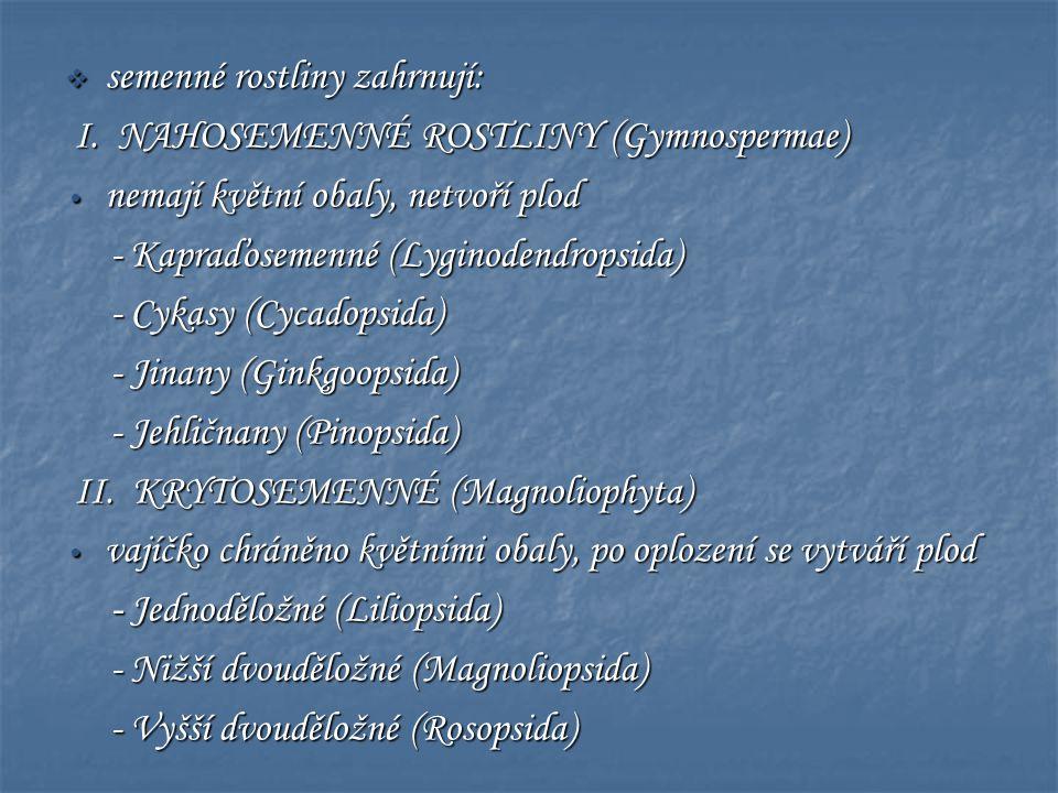  semenné rostliny zahrnují: I. NAHOSEMENNÉ ROSTLINY (Gymnospermae) I. NAHOSEMENNÉ ROSTLINY (Gymnospermae) • nemají květní obaly, netvoří plod - Kapra
