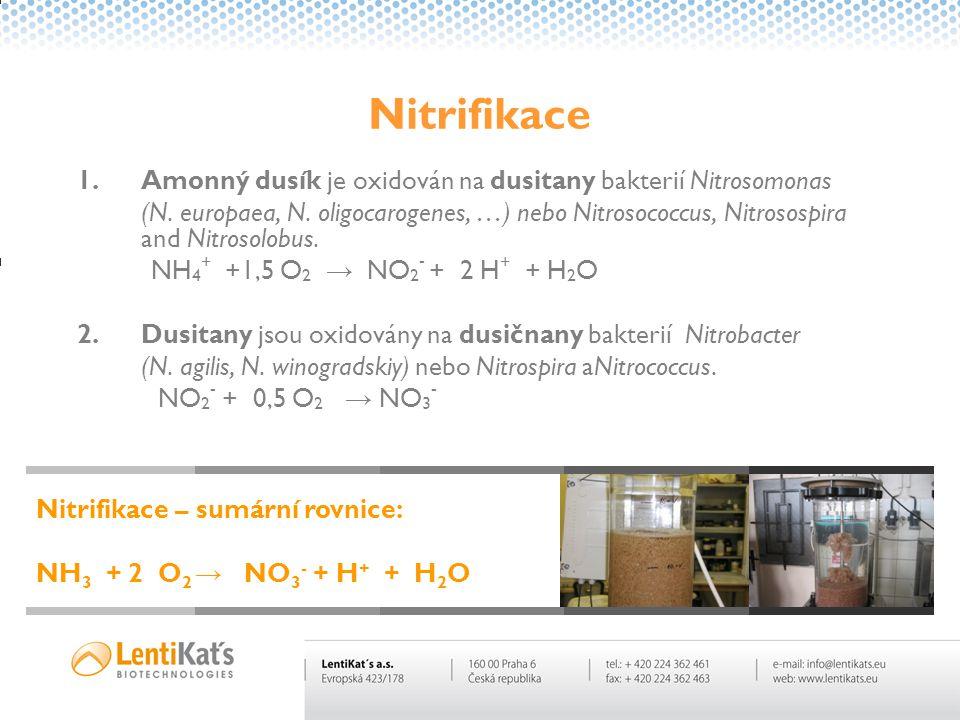 Nitrifikace 1.Amonný dusík je oxidován na dusitany bakterií Nitrosomonas (N. europaea, N. oligocarogenes, …) nebo Nitrosococcus, Nitrosospira and Nitr