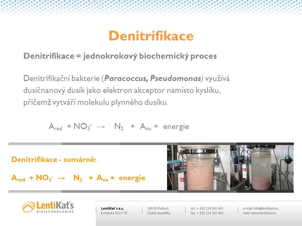 Denitrifikace = jednokrokový biochemický proces Denitrifikační bakterie (Paracoccus, Pseudomonas) využívá dusičnanový dusík jako elektron akceptor nam