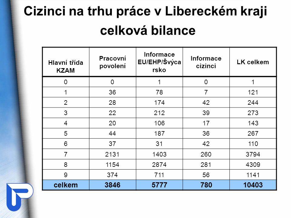 Shrnutí k problematice cizinců •Ve všech skupinách cizinců dominuje zastoupení v hlavních třídách KZAM č.
