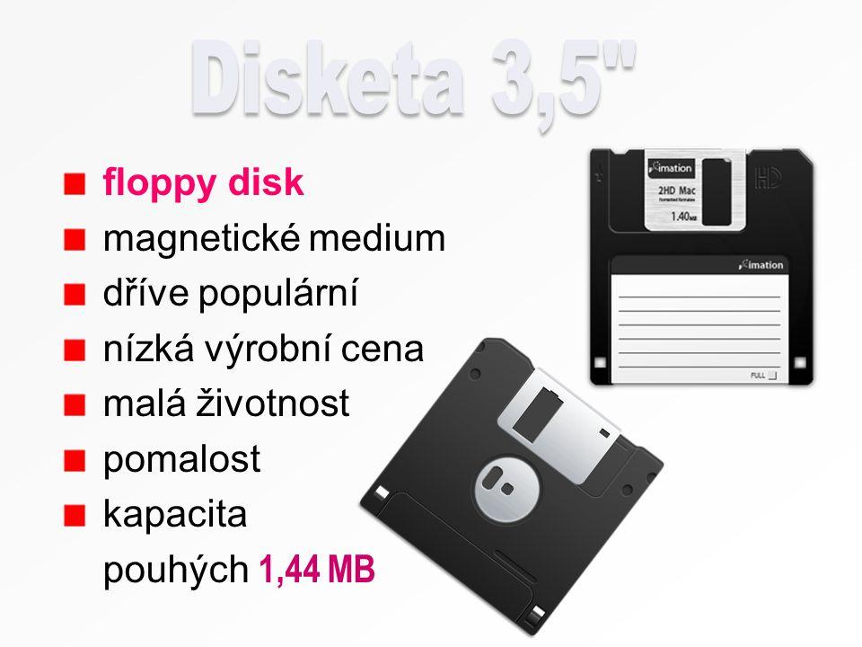 modernější alternativa klasické diskety 3,5 spolehlivější, vyšší otáčky, hustější záznam (kapacita 100 nebo také 250 a 750 MB ) nutnost speciální mechaniky vysoká cena svého času populární na podnikové úrovni, ale jinak se příliš neujaly (nástup optických a USB disků)