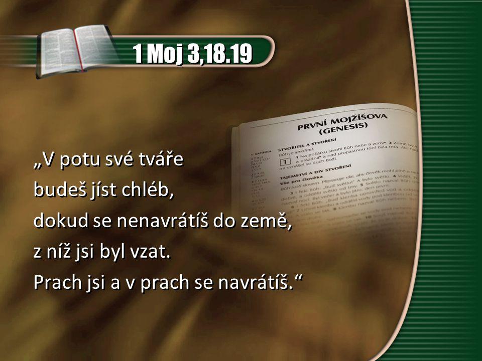 """1 Moj 2,7 """"I vytvořil Hospodin Bůh člověka, prach ze země, a vdechl mu v chřípí dech života."""
