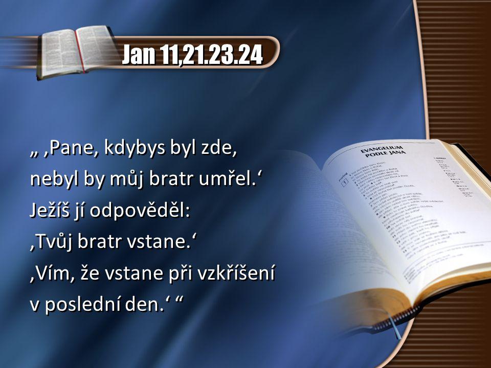 """Jan 11,21.23.24 """" 'Pane, kdybys byl zde, nebyl by můj bratr umřel.' Ježíš jí odpověděl: 'Tvůj bratr vstane.' 'Vím, že vstane při vzkříšení v poslední"""