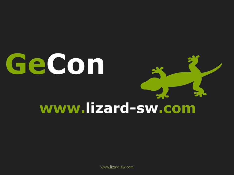 www.lizard-sw.com