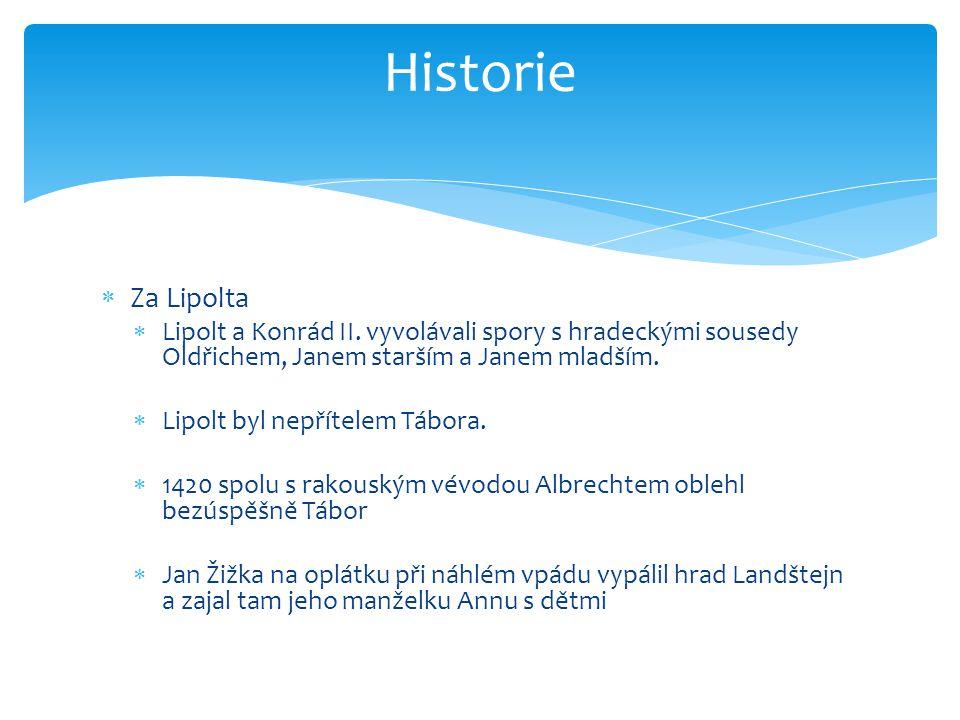  Za Lipolta  Lipolt a Konrád II.