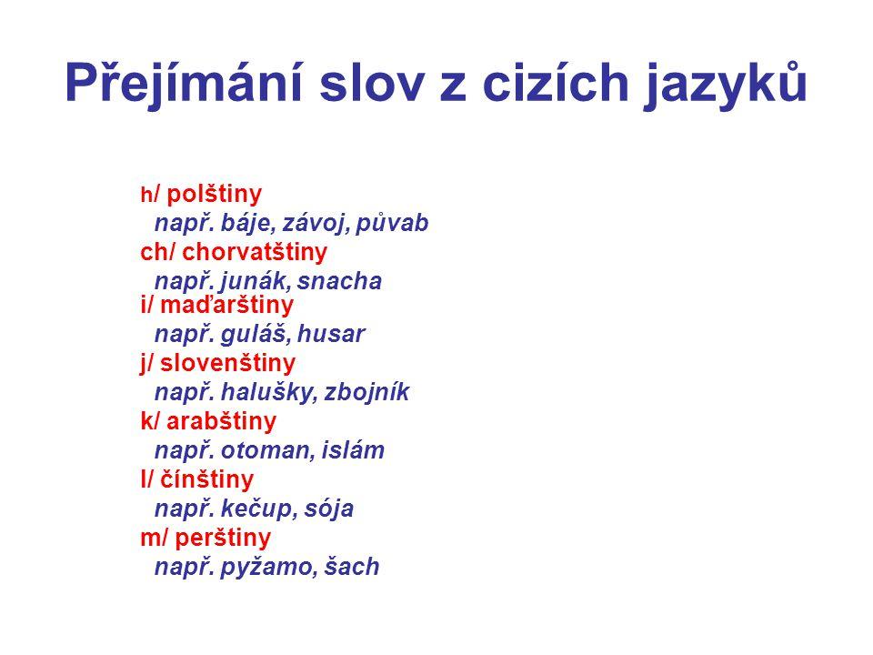 Přejímání slov z cizích jazyků h / polštiny např. báje, závoj, půvab ch/ chorvatštiny např. junák, snacha i/ maďarštiny např. guláš, husar j/ slovenšt