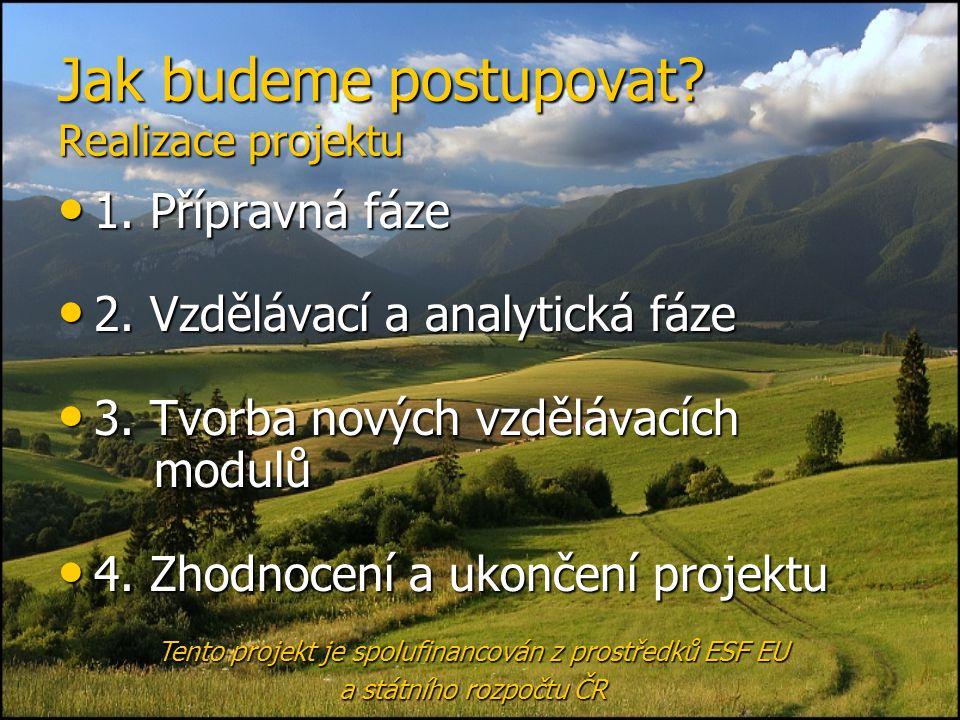 Jak budeme postupovat? Realizace projektu • 1. Přípravná fáze • 2. Vzdělávací a analytická fáze • 3. Tvorba nových vzdělávacích modulů • 4. Zhodnocení