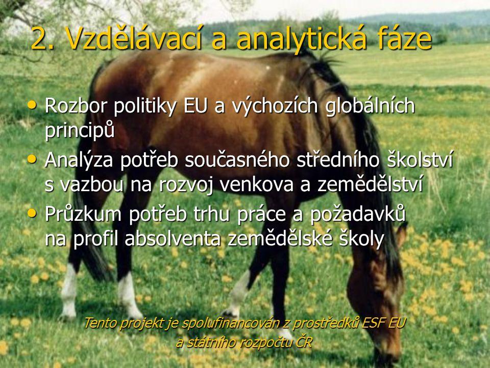 2. Vzdělávací a analytická fáze • Rozbor politiky EU a výchozích globálních principů • Analýza potřeb současného středního školství s vazbou na rozvoj