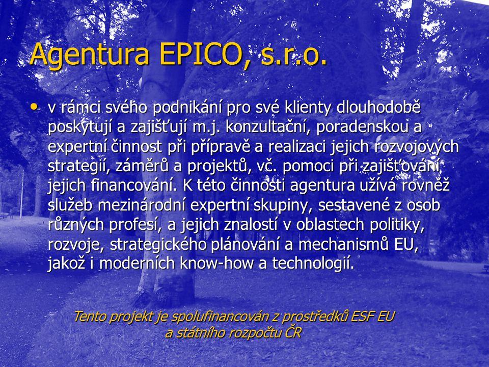 Agentura EPICO, s.r.o. • v rámci svého podnikání pro své klienty dlouhodobě poskytují a zajišťují m.j. konzultační, poradenskou a expertní činnost při
