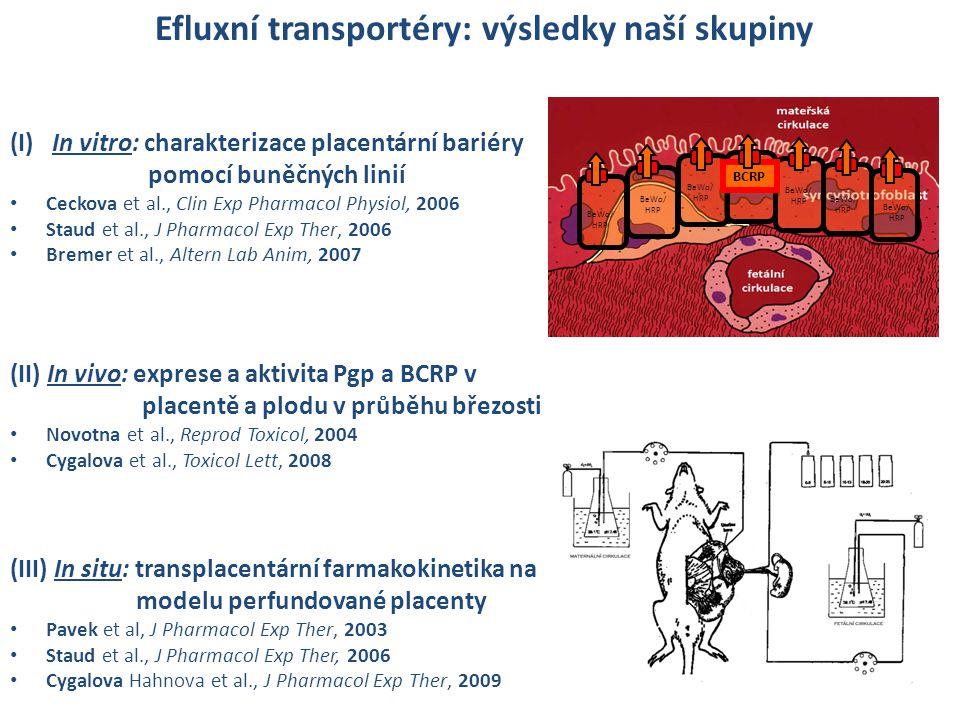 Efluxní transportéry: výsledky naší skupiny BeWo/ HRP BCRP (I) In vitro: charakterizace placentární bariéry pomocí buněčných linií • Ceckova et al., C