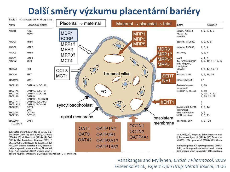 Děkuji za pozornost! Vähäkangas and Myllynen, British J Pharmacol, 2009 Evseenko et al., Expert Opin Drug Metab Toxicol, 2006 Další směry výzkumu plac