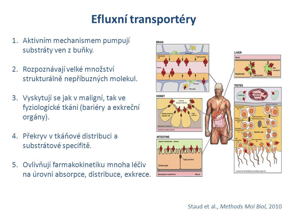 Staud et al., Methods Mol Biol, 2010 Efluxní transportéry 1.Aktivním mechanismem pumpují substráty ven z buňky. 2.Rozpoznávají velké množství struktur