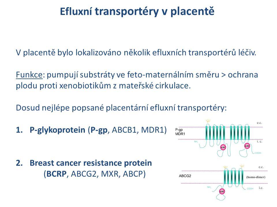 Efluxní transportéry v placentě V placentě bylo lokalizováno několik efluxních transportérů léčiv. Funkce: pumpují substráty ve feto-maternálním směru