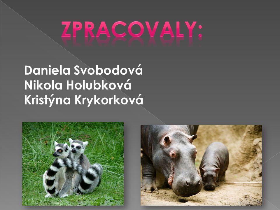Daniela Svobodová Nikola Holubková Kristýna Krykorková
