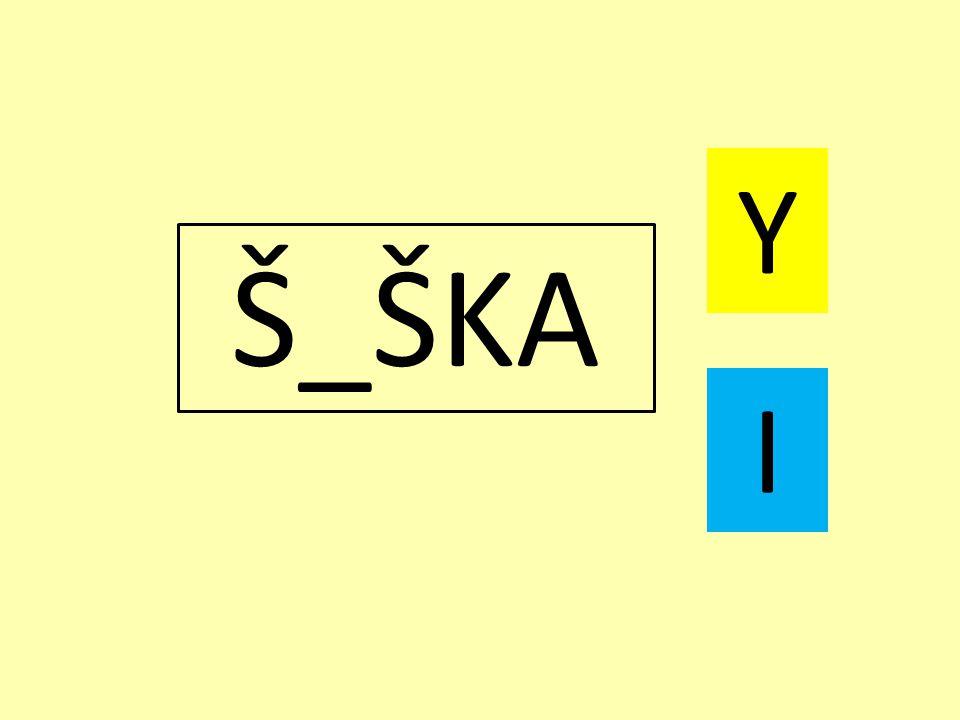 Š_ŠKA Y I