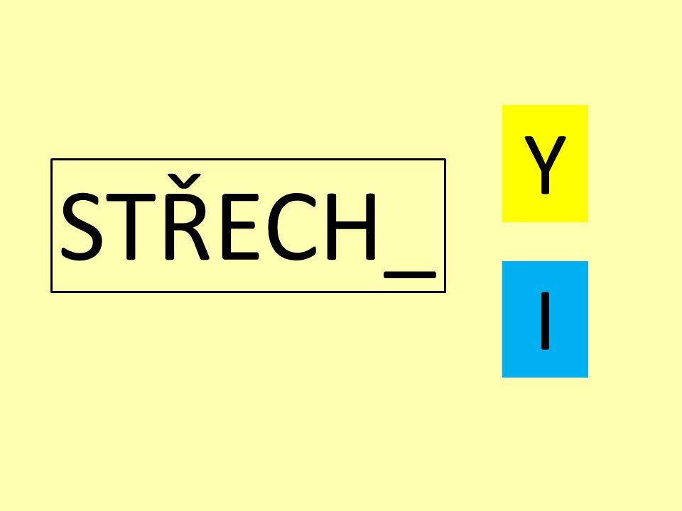 STŘECH_ Y I