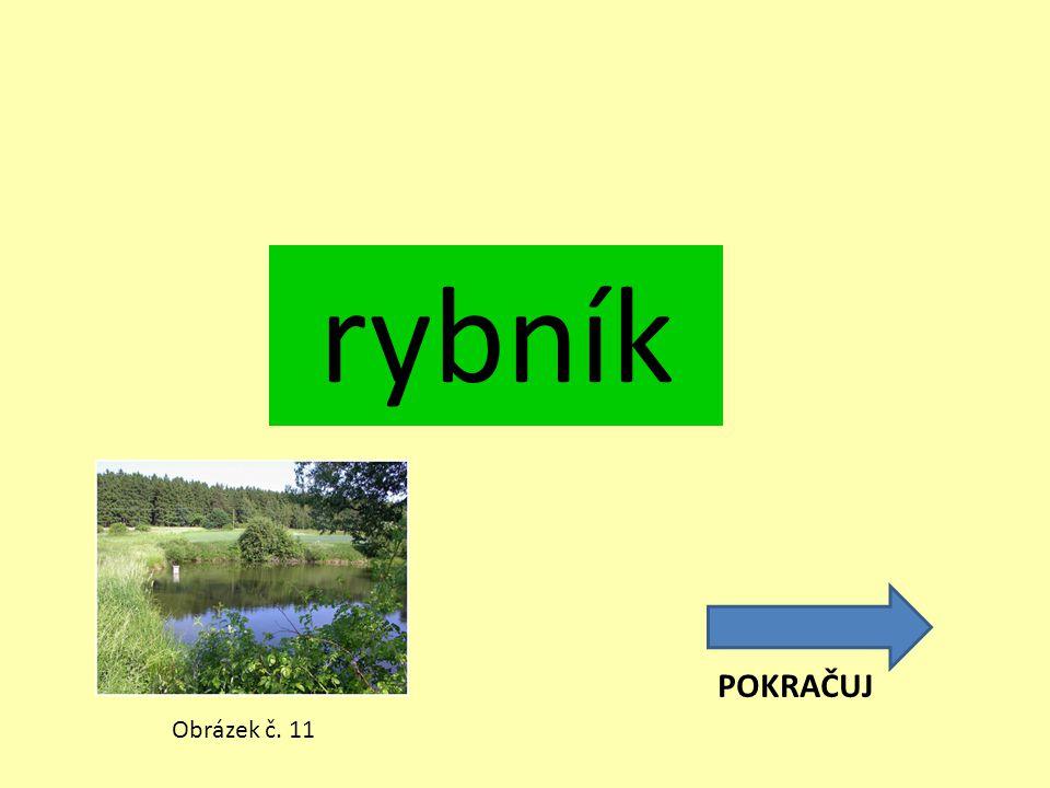 rybník POKRAČUJ Obrázek č. 11