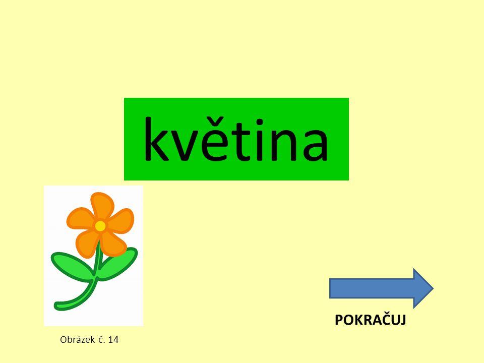 květina POKRAČUJ Obrázek č. 14