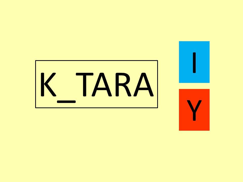 K_TARA I Y
