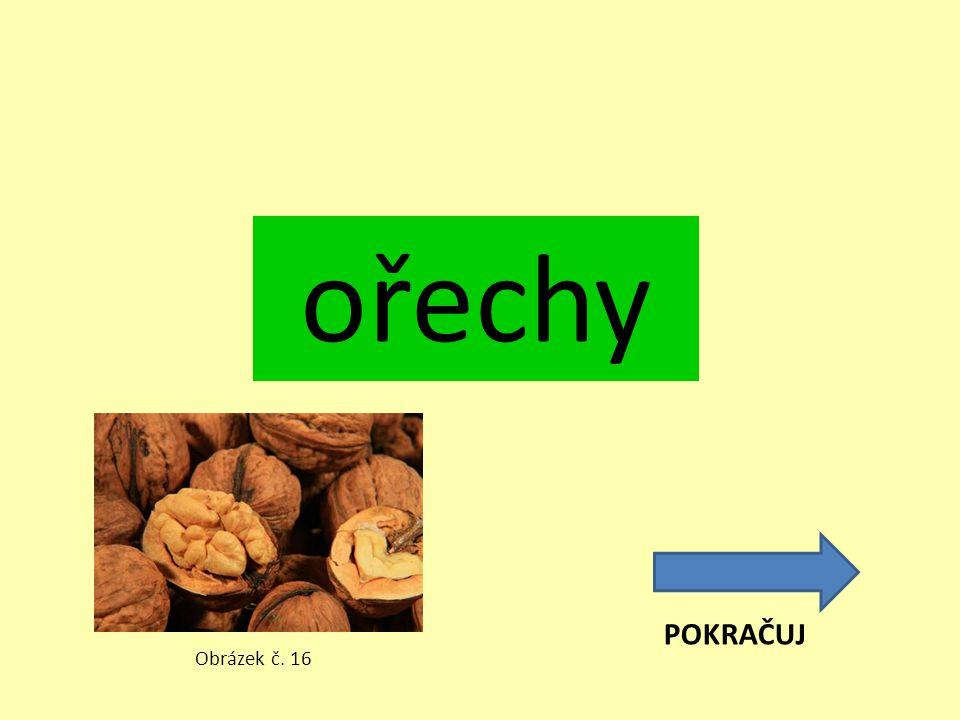ořechy POKRAČUJ Obrázek č. 16