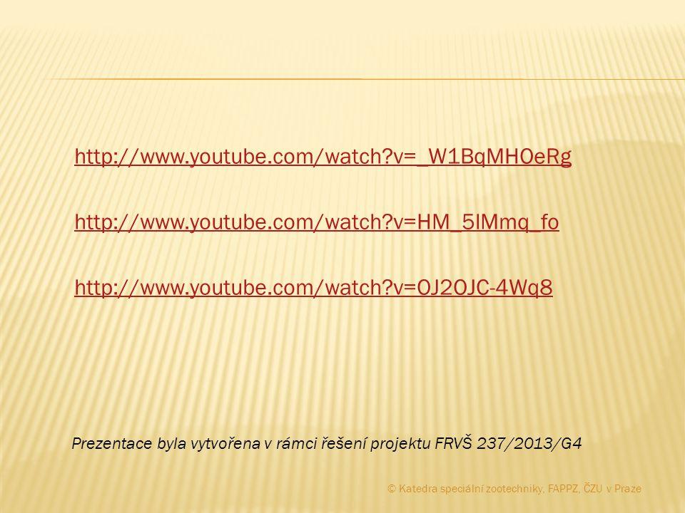 http://www.youtube.com/watch?v=_W1BqMHOeRg http://www.youtube.com/watch?v=HM_5lMmq_fo http://www.youtube.com/watch?v=OJ2OJC-4Wq8 Prezentace byla vytvo